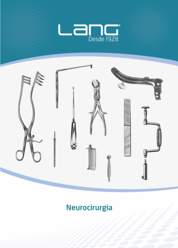 lang 13 neurologia
