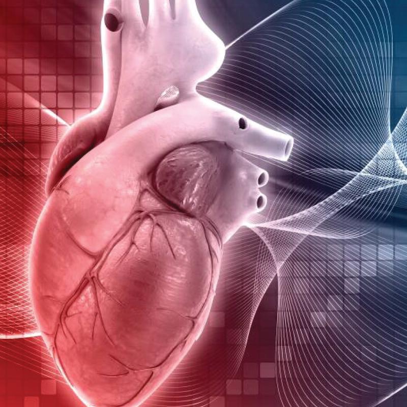 Side Gate <br> Cirurgia Cardíaca Minimamente Invasiva